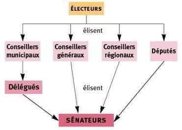 schema senat
